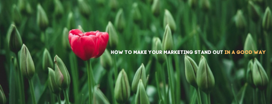 HOW TO MAKE YOUR MARKETING STAND OUT IN A GOOD WAY